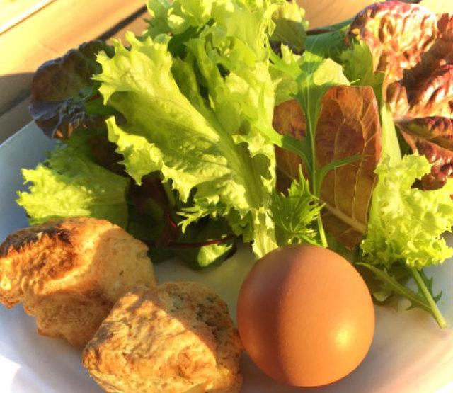 コテージ 海soraアネックス朝食